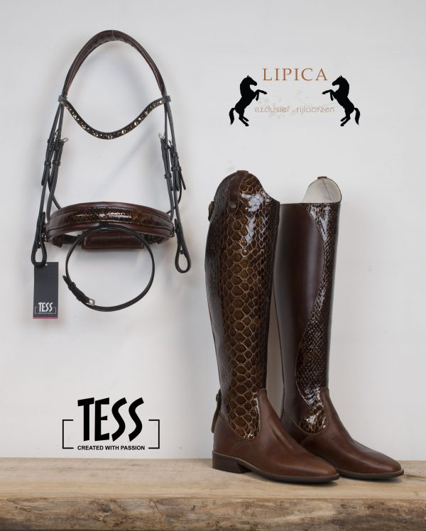 TESS Bridles One-Off Lipica