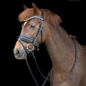TESS Trens Pony Bridle