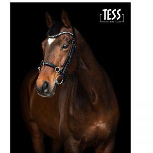 HorseGuard Cheval Kaptoom